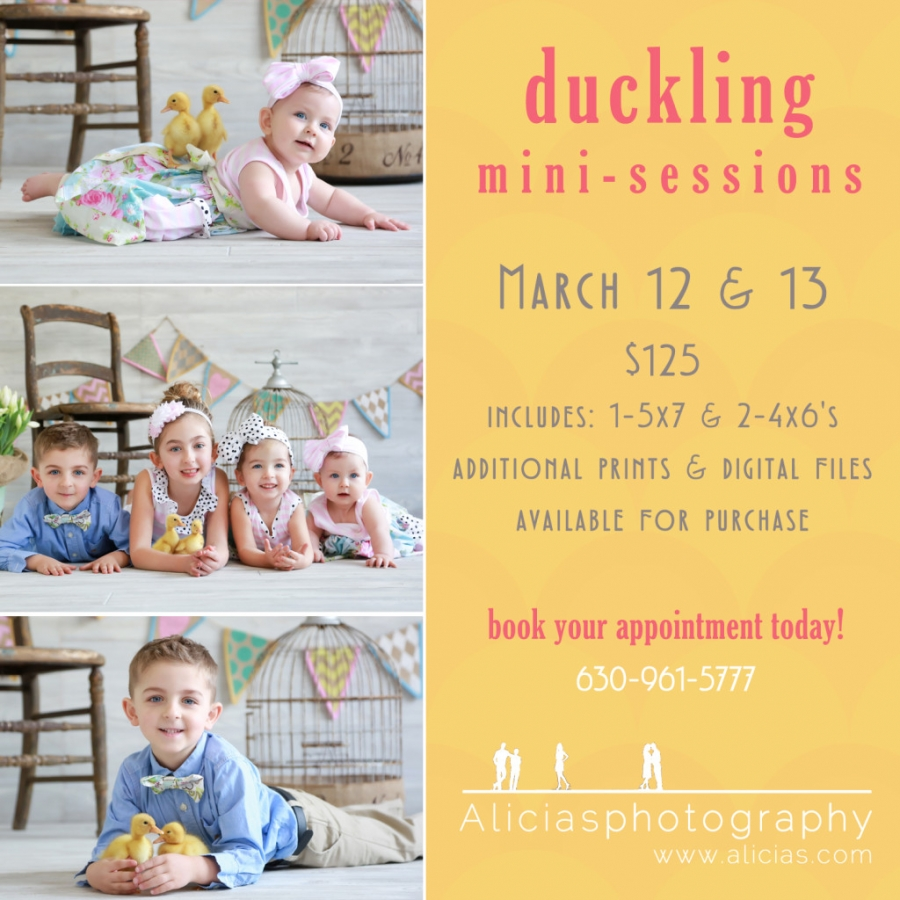 Chicago Naperville Easter Duckling Sessions