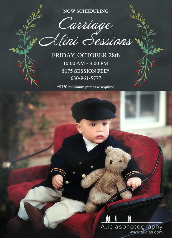 Naperville Chicago Hinsdale Photographer...Classic Carriage Mini Holiday Sessions