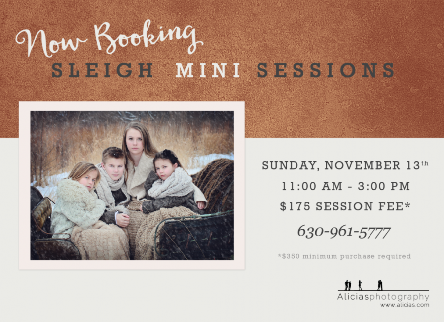 Naperville Chicago Hinsdale Photographer Vintage Sleigh Mini Sessions